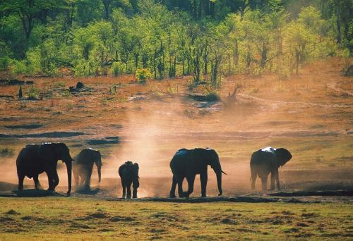 Mit Gebeco die Schönheiten Afrikas entdecken