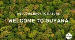 Ein Video über das Naturparadies Guyana beeindruckte die Jury